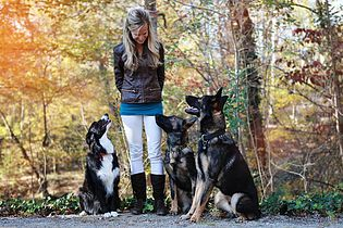 FAQ About Becoming A Dog Trainer (part 1)