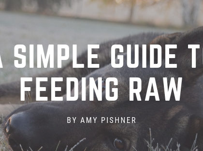 A Simple Guide to Feeding Raw