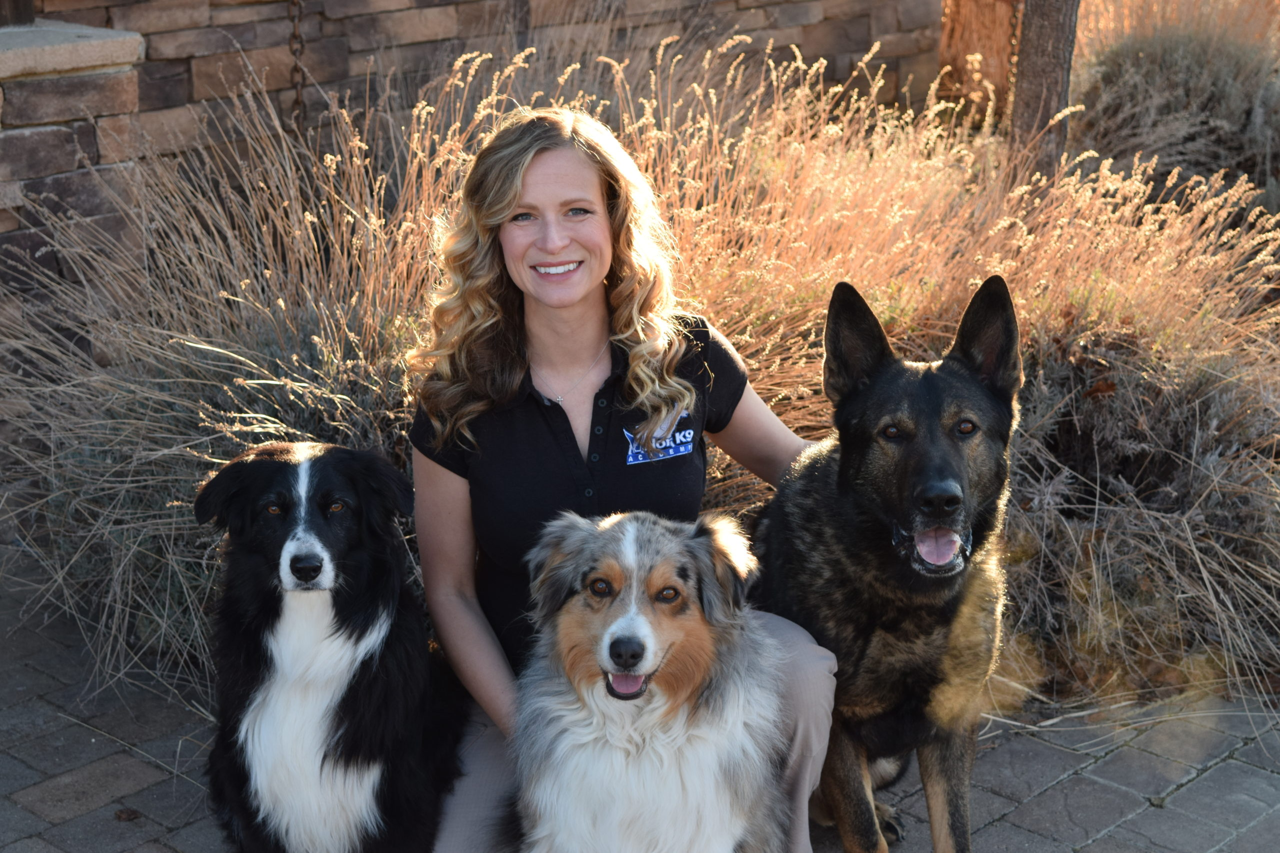 all breeds dog training