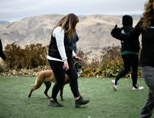 Training Dog Trainers and The 2020 Trainer Retreat