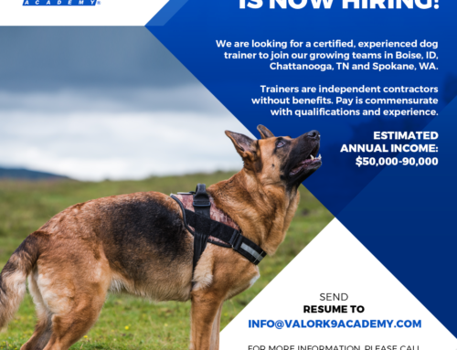 SEEKING: Professional dog trainer to join our team in Chattanooga, TN