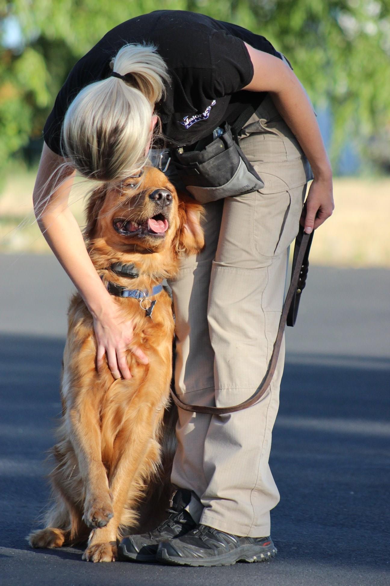jenna larson and golden retriever boise dog trainer