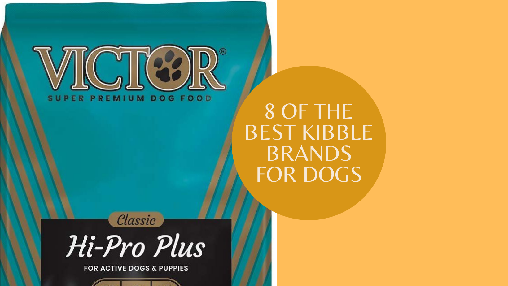 8 best kibble brands for dogs